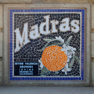 21-Woodbury-Irvine-Citrus-Label-Mosaic-Madras