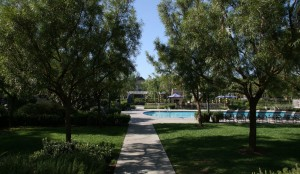 23-Woodbury-Irvine-Pepper-Tree-Square-Pool