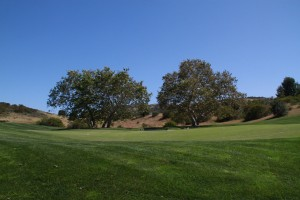 014-Shady-Canyon-Golf-Course-Hole-01