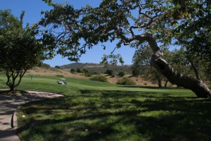 016-Shady-Canyon-Golf-Course-Hole-01