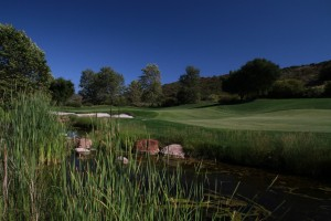 021-Shady-Canyon-Golf-Course-Hole-02