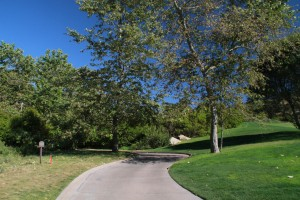 026-Shady-Canyon-Golf-Course-Hole-02