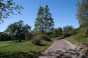 030-Shady-Canyon-Golf-Course-Hole-07