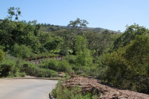 041-Shady-Canyon-Golf-Course-Hole-08