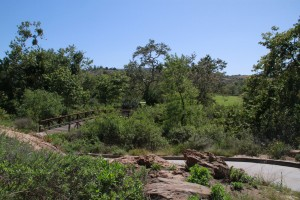051-Shady-Canyon-Golf-Course-Hole-11