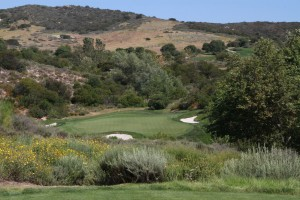 054-Shady-Canyon-Golf-Course-Hole-11