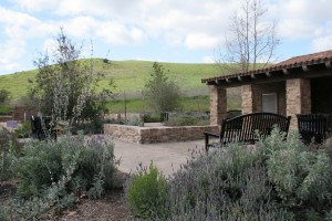 Quail-Hill-Irvine-Open-Space_02