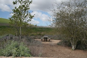 Quail-Hill-Irvine-Open-Space_06