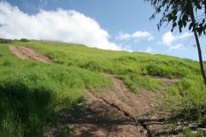 Turtle-Rock-Irvine-Trails-and-Vistas_00