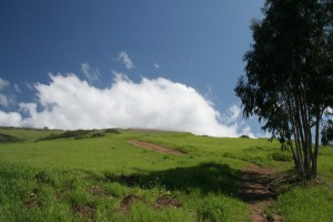 Turtle-Rock-Irvine-Trails-and-Vistas_01