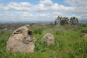 Turtle-Rock-Irvine-Trails-and-Vistas_13