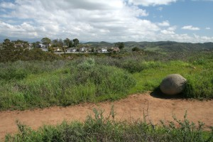 Turtle-Rock-Irvine-Trails-and-Vistas_14