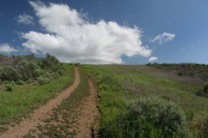 Turtle-Rock-Irvine-Trails-and-Vistas_16
