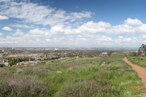Turtle-Rock-Irvine-Trails-and-Vistas_26