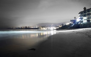 Laguna-Beach-Christmas-Celebration-2010_07
